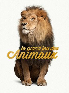 Le grand jeu des animaux