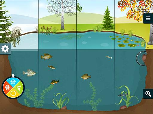 Aquaverse_pond