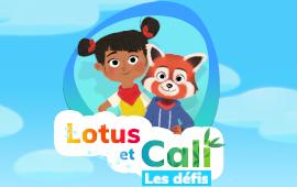 Lotus et Cali: Les défis