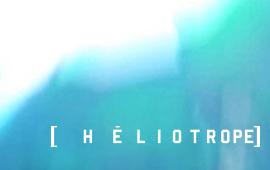 Héliotrope